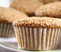 Bran Muffins Royalty Free Stock Photography - 19301287