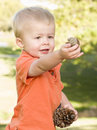 Cute Young Boy With Pine Cones In The Park Stock Photos - 19365553