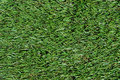 Fake Grass Stock Photography - 19437312