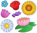 Various Flowers Set Stock Images - 19562904