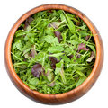 Fresh Salad Mix Royalty Free Stock Photo - 19597595