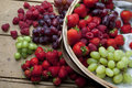 Summer Fruit And Berries Stock Photo - 19613780