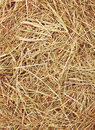 Straw Texture Stock Photography - 19627362