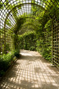 Alley And Trellises Stock Photography - 19633702
