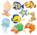 Cartoon Fish Collection ,icon Set Stock Photography - 19661222