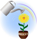 Flower And Watering Can Royalty Free Stock Photo - 19665985