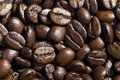 Coffee Bean Royalty Free Stock Images - 19682699