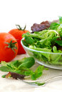 Baby Greens And Tomatoes Stock Photos - 1970923