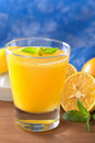 Fresh Orange Juice Royalty Free Stock Photos - 19716448