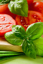 Tomatoes And Basil Stock Photography - 19751512