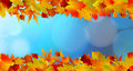 Red And Yellow Leaves Against A Bright Blue Sky Royalty Free Stock Image - 19791756