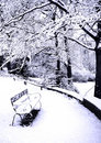 Benches Covered In Powdery Soft Snow Royalty Free Stock Photography - 1980297