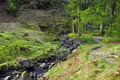 River On Forest Glade In English Countryside Stock Photo - 19858340