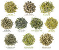 Chinese Green Tea Collection Royalty Free Stock Photography - 19873167