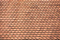 Tiles On Old Castle Roof Royalty Free Stock Images - 19903979