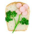 Funny Sandwich Decorated With Flower From Meal Royalty Free Stock Images - 20123859