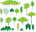Cartoon Set Of Trees Silhouettes Royalty Free Stock Photography - 20142137
