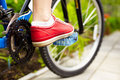 Side View Of A Cycle With Front Wheel Stock Images - 20203514