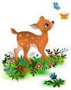 Fawn Royalty Free Stock Images - 20234459