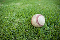 Baseball In Outfield Grass Stock Photo - 20249810