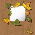 Autumn Background With Leaves Stock Photo - 20260580