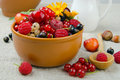 Summer Berries Royalty Free Stock Photography - 20291317