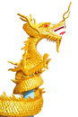 Golden Dragon Stock Photo - 20291740