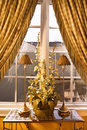 Window With Curtain And Plant In Home. Stock Image - 2037321