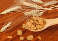 Wheat Flakes Royalty Free Stock Photography - 20348427