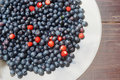 Forest Berries On A Plate Stock Photography - 20359902