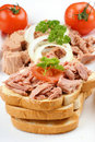 Tuna Toast With Tomato Stock Images - 20462734