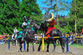 Green Knight Deflects The Red Knight S Hit Royalty Free Stock Image - 20467996