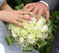 Wedding Hands And Rings On Flowers Stock Photo - 20498850