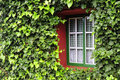 Window With Green Leafs Royalty Free Stock Images - 20498929