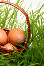 Easter Eggs Royalty Free Stock Image - 2053516