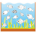 Children Game: Only Two Equal Fishes Stock Image - 20501831