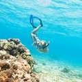 Diver Royalty Free Stock Photography - 20502137
