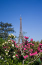 Eiffel Tower And Flowers Stock Photo - 20541170