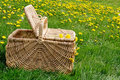 Picnic Basket Dandelion Meadow Royalty Free Stock Images - 20544329