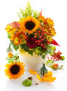 Autumnal Flowers Royalty Free Stock Photos - 20550428