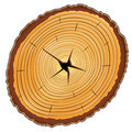 Wooden Cross Section Royalty Free Stock Photo - 20553575