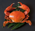 Crab Stock Photography - 20559202