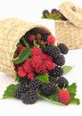 Raspberries And Blackberries Stock Image - 20589761