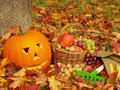 Autumn Background Stock Photography - 20630062