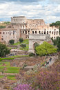 Colosseum From Roman Forum Stock Photography - 20637922
