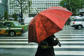 Red Umbrella Royalty Free Stock Photography - 20655487