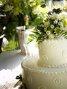 Spring Wedding Cake Side View Stock Photography - 20756902