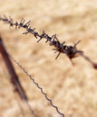 Barbed Wire Royalty Free Stock Photos - 2088788