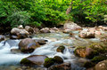 Water Stream In Forest Stock Photos - 20864323