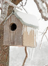 A Bird House After An Ice Storm Royalty Free Stock Photo - 20878815